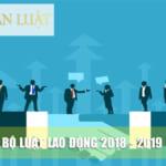 Bộ Luật lao động mới nhất 2020 & Các quyền lợi người lao động cần biết!
