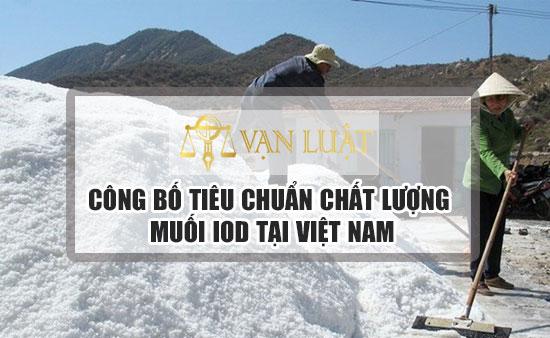 Công bố tiêu chuẩn chất lượng muối ăn, Muối iod tại Việt Nam