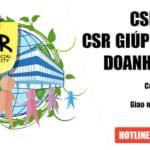 CSR là gì? CSR hỗ trợ như thế nào cho doanh nghiệp?