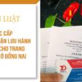 Thủ tục cấp giấy chứng nhận lưu hành tự do (CFS) cho trang thiết bị y tế tại Đồng Nai