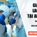 Giấy phép lao động tại An Giang trọn gói | Giấy phép cho người nước ngoài