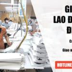 Thủ tục cấp Giấy phép lao động tại Điện Biên Uy Tín – Nhanh Gọn