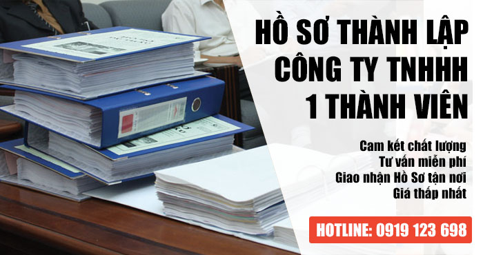 Hồ sơ thành lập công ty TNHH 1 thành viên Cần Những Gì?
