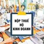 Hướng dẫn nộp thuế hộ kinh doanh gia đình tại Việt Nam