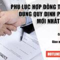 Mẫu phụ lục hợp đồng Anh Việt (Song Ngữ - Anh Việt )bản mới nhất 2020
