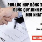 Mẫu phụ lục hợp đồng Anh Việt (Song Ngữ – Anh Việt )bản mới nhất 2020