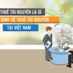 Thuế tài nguyên là gì? Quy định về thuế tài nguyên